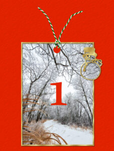 advent-day-1