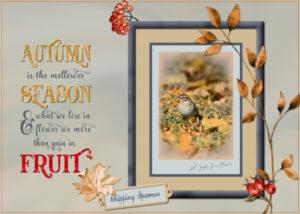 autumn-quotea