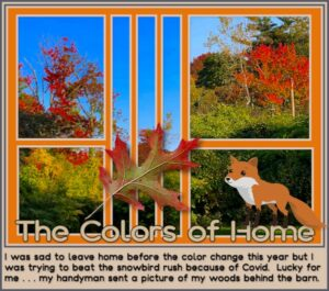 colors-of-home-2